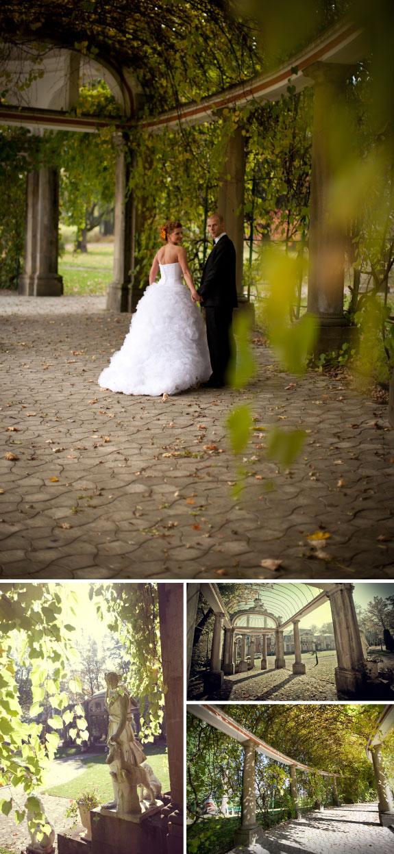 Ślubna sesja zdjęciowa w parku, jesienią