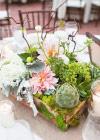 Ekologiczne Inspiracje Ślubne: Mech
