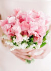 Kwiat Tygodnia: Groszek