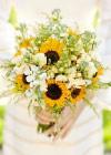 Kwiaty Tygodnia: Słoneczniki