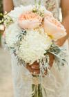Kwiaty Tygodnia: Białe Chryzantemy