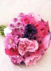 Kwiaty Tygodnia: Chryzantemy {część 2}